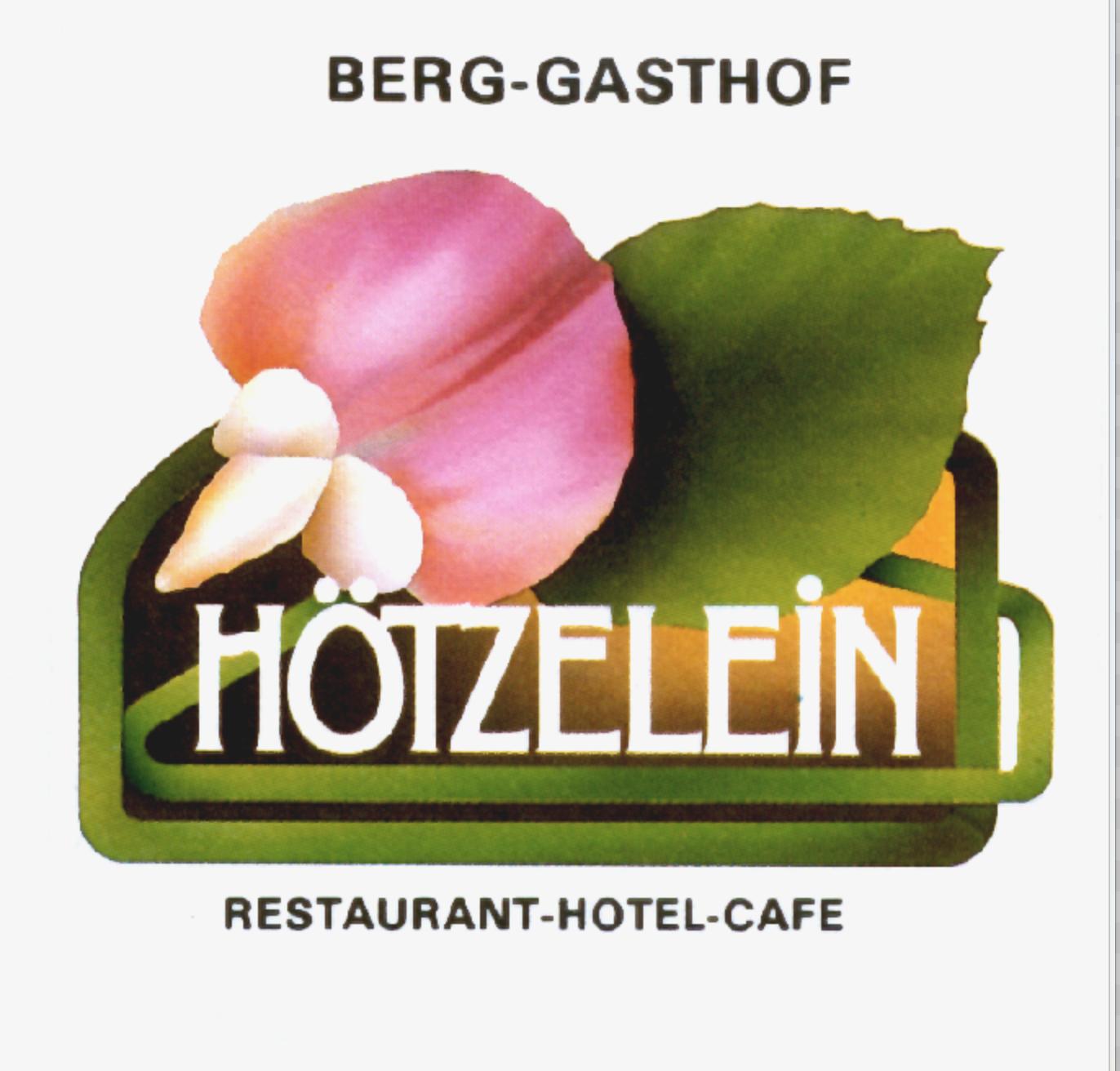 hoetzelein_logo